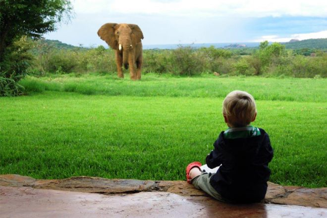 Sosian child watching elephant
