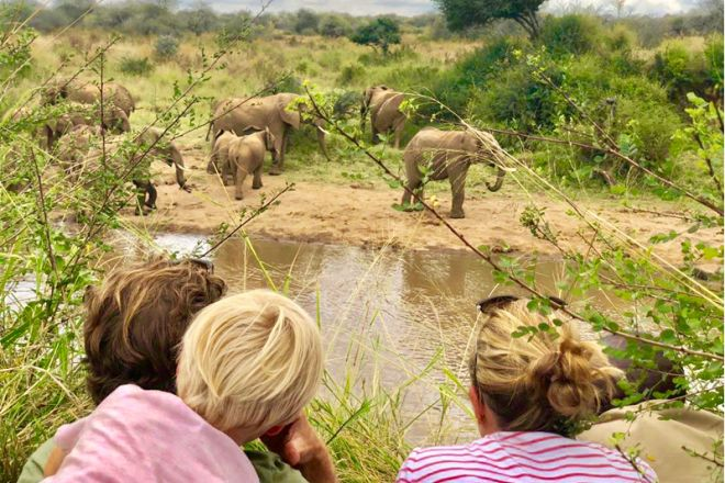 Sosian elephant watching kids