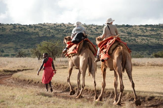 Walking Wild camel ride