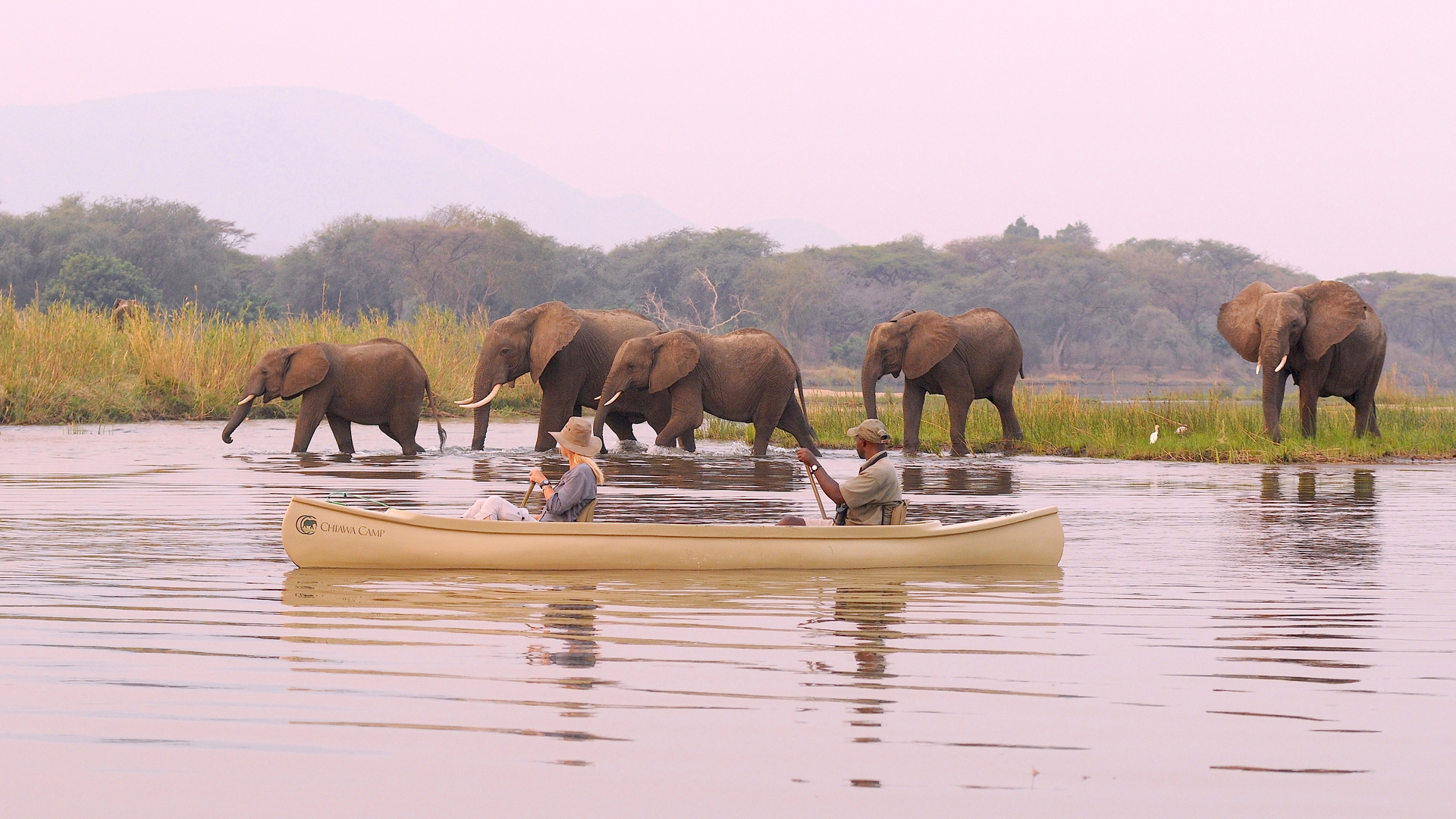 zambia activities chiawa canoeing elephants