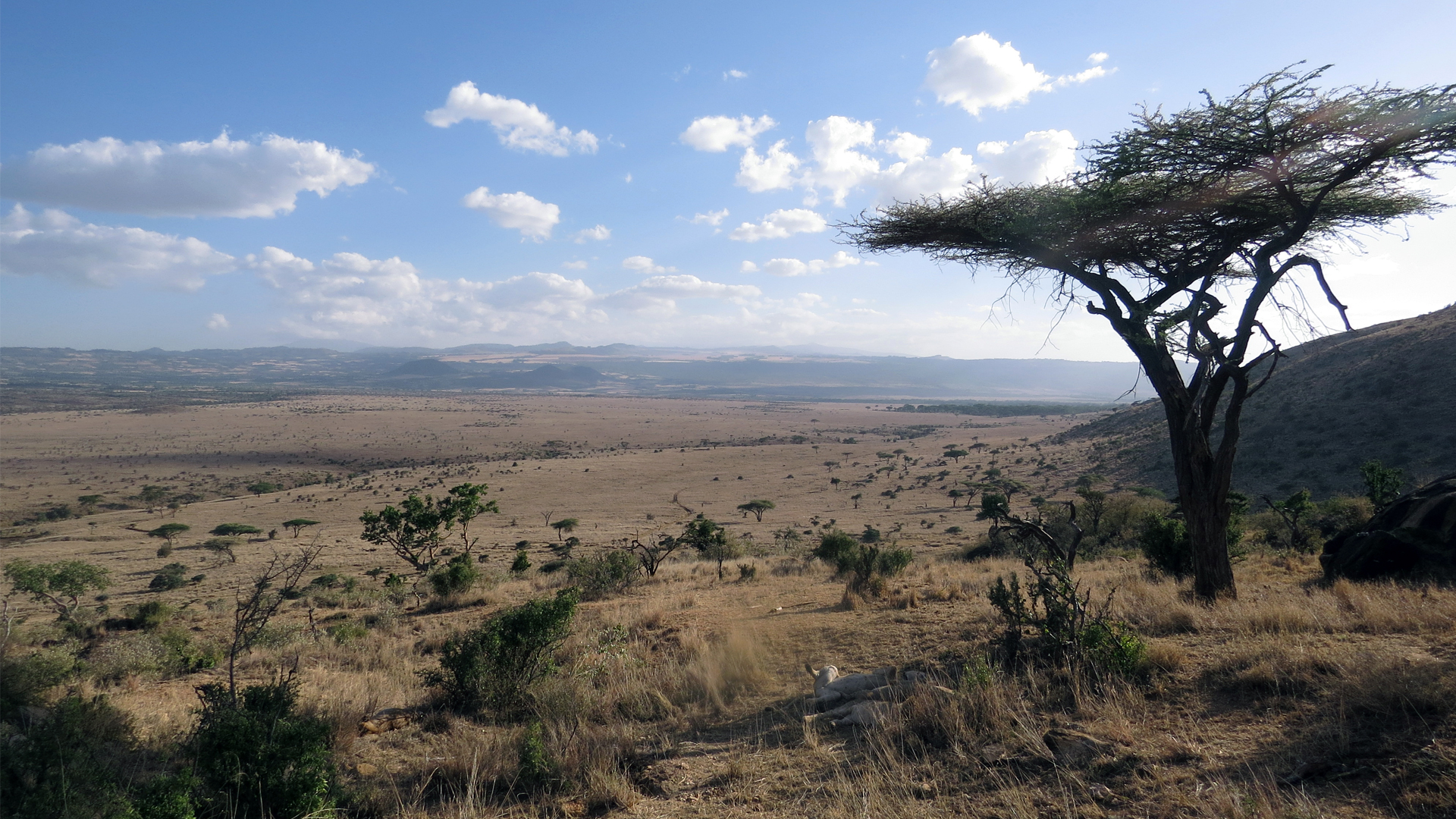 kenya regions the laikipia region view