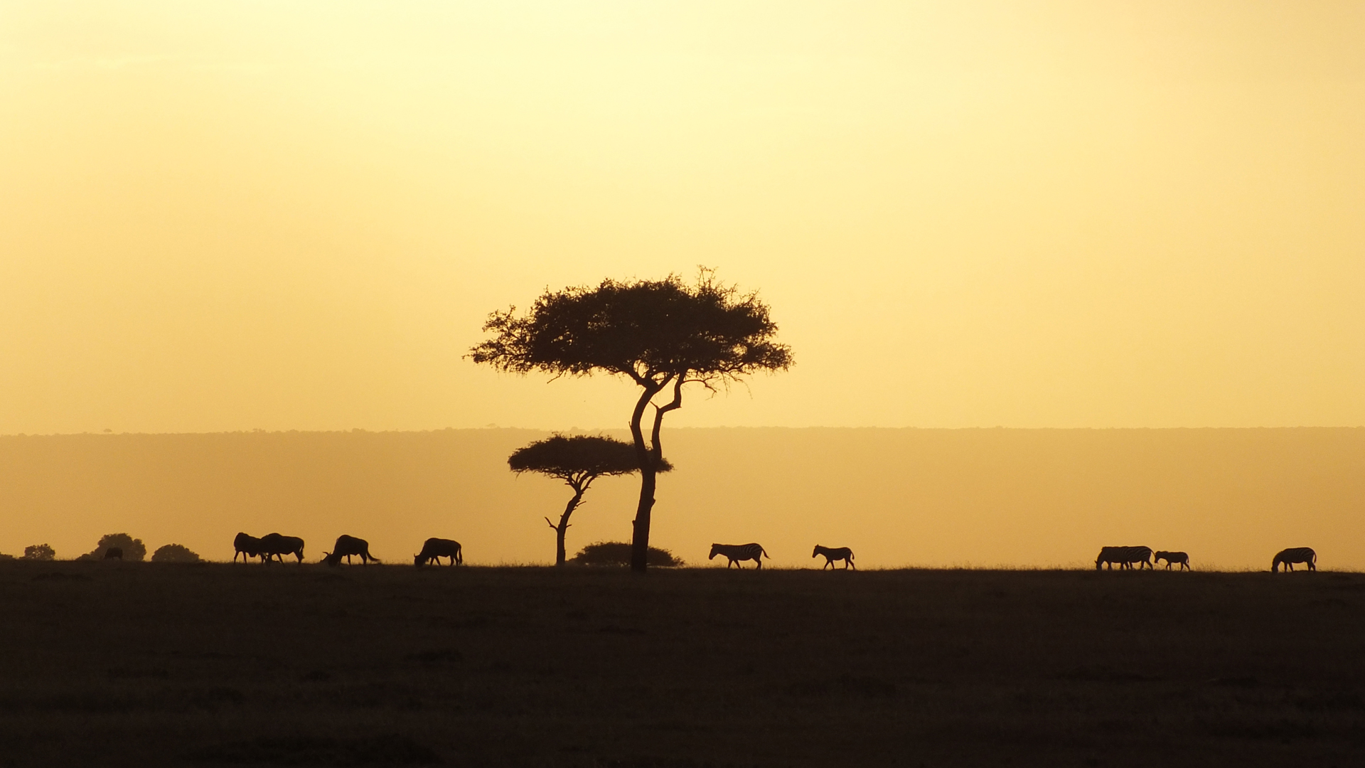 kenya itineraries sunset