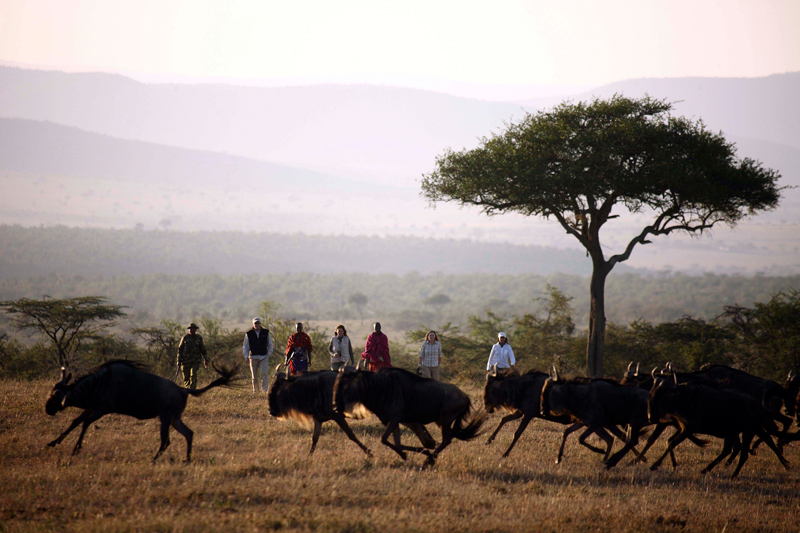 Walking Safaris kenya kicheche valley walk