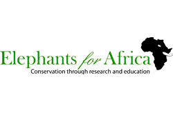 Responsible Tourism elephants for africa logo