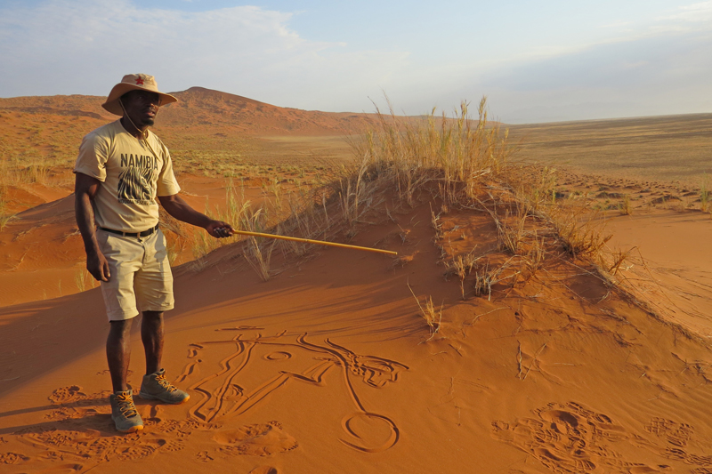 namibia topics guiding