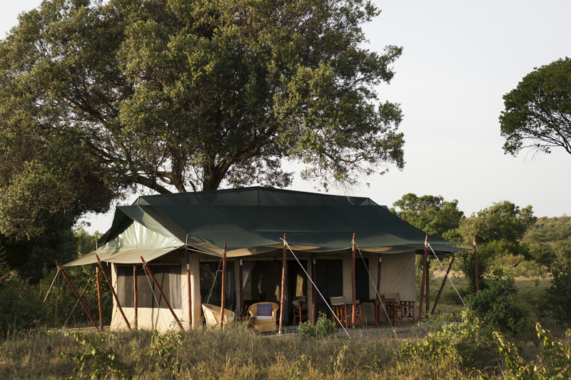 offbeat mara camp thumbnail