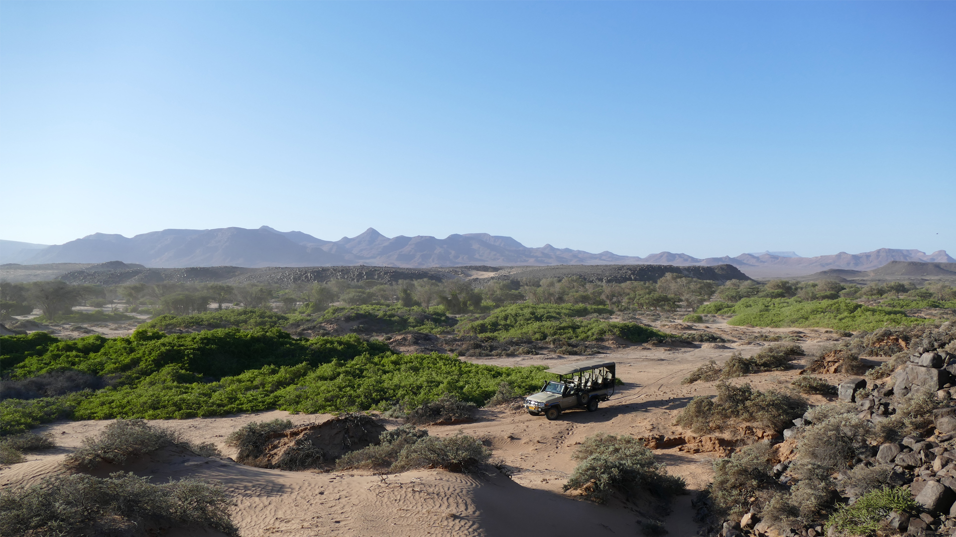 namibia activities header