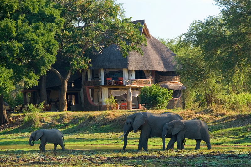 luangwa safari house thumb