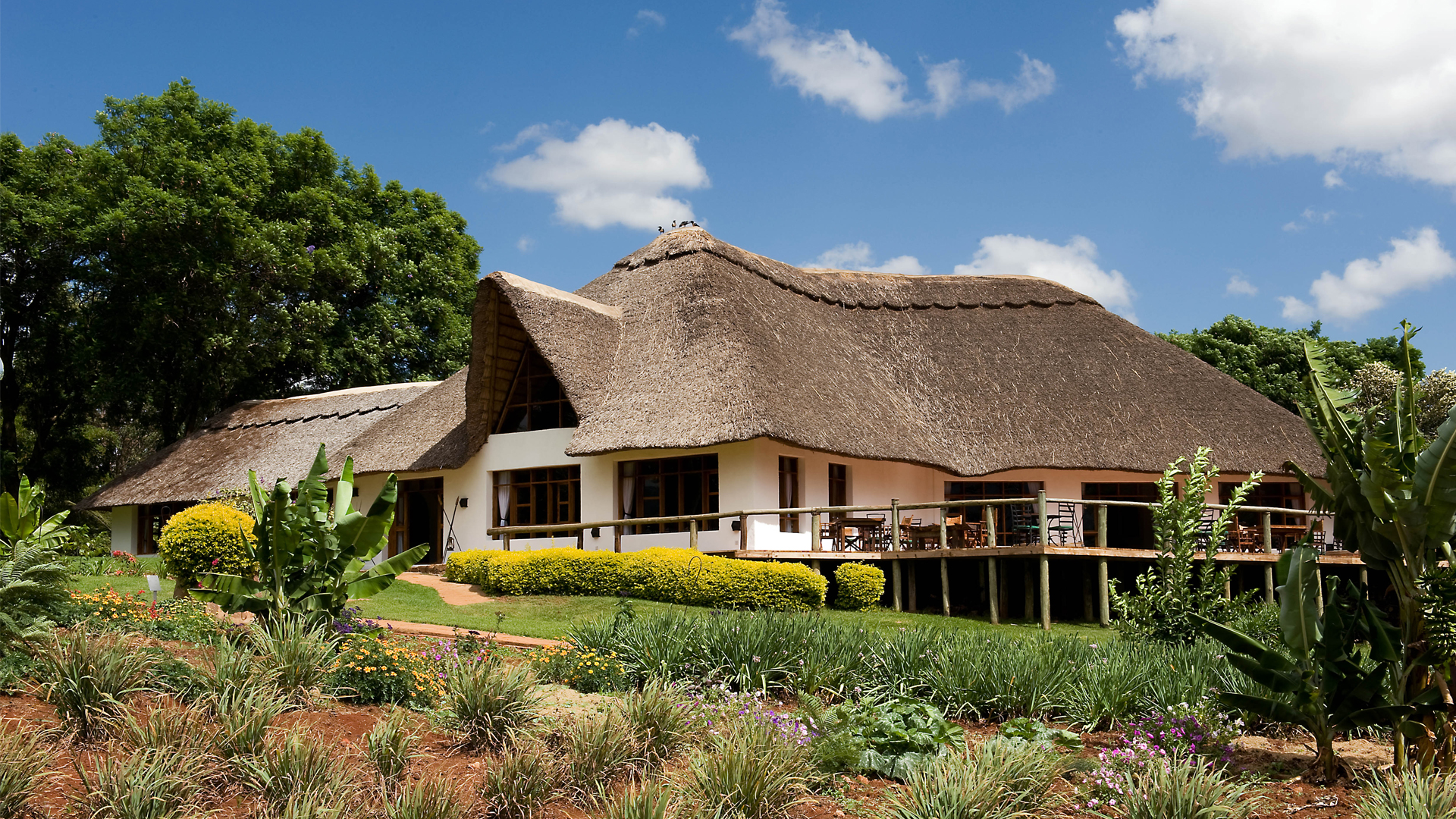 ngorongoro farmhouse header