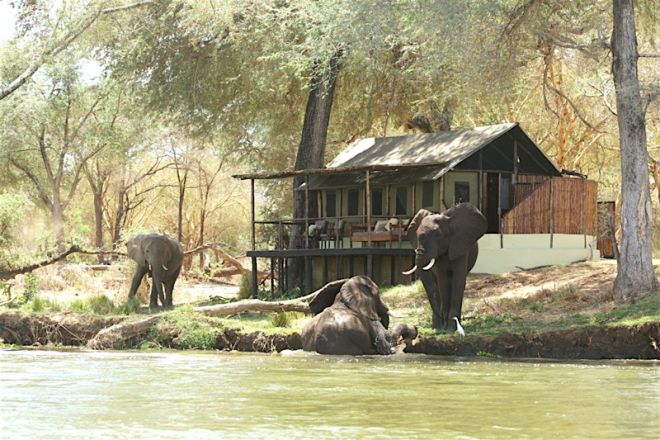 Old-Mondoro-room-setting-elephant