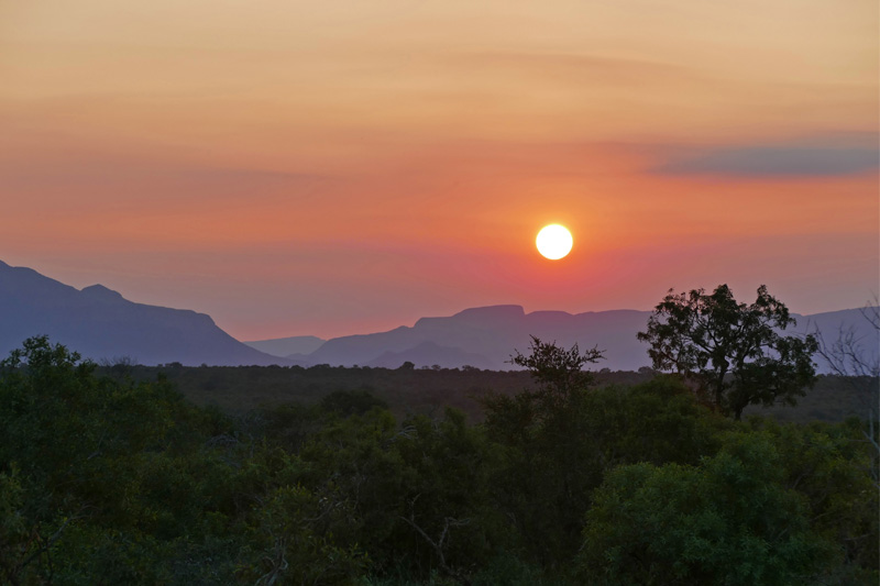 Rob-explores-new-properties-in-the-private-reserves-bordering-Kruger-National-Park
