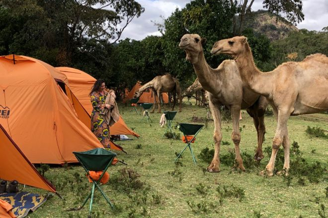 Karisia-ArBnC-tents-and-camels